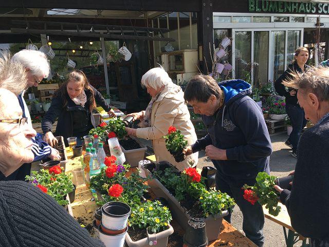 Blumenkästen bepflanzen am 24.04.2019